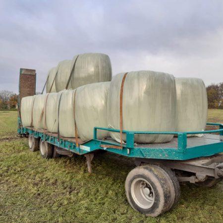 Silagetransport